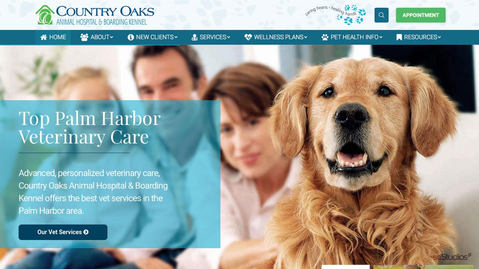 Veterinary Web Design - sliStudios Web Development Miami Beach