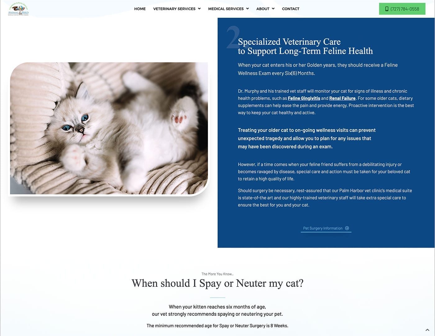 Animal Specialty Page - dogcatbirdvet.org - sliStudios Website Design | Miami