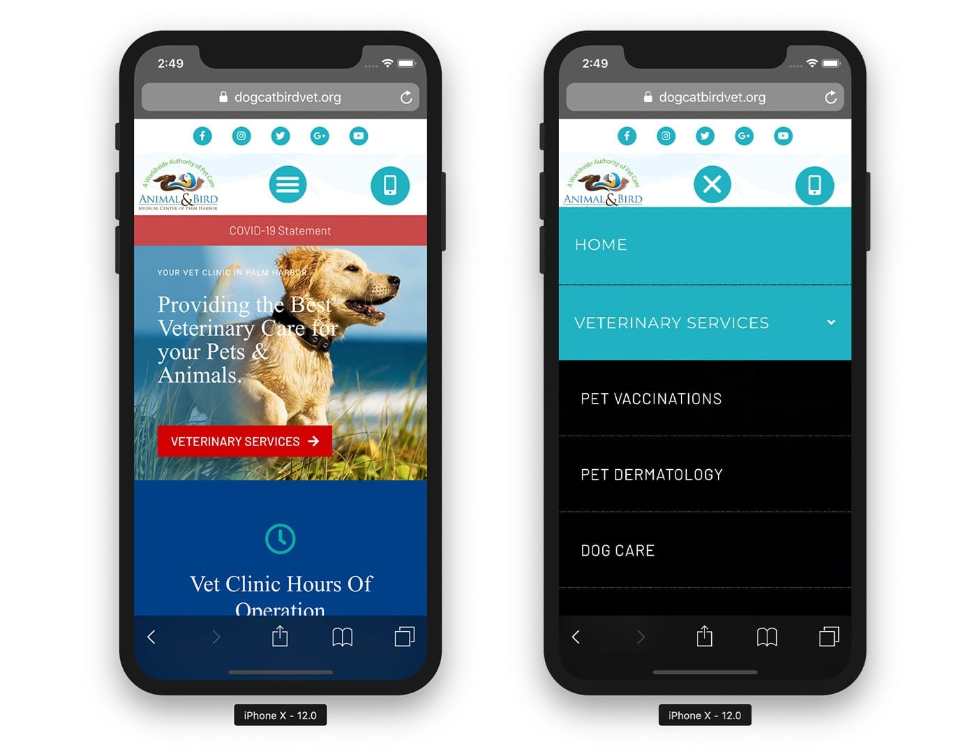 Mobile Website View - dogcatbirdvet.org - sliStudios Website Design   Miami